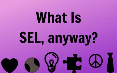 What exactly is SEL?