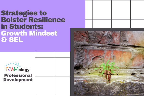 Strategies to Bolster Resilience in Students: Growth Mindset & SEL